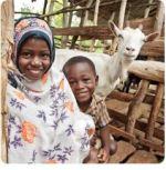 heifer-goat gift
