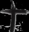 ash-cross-logo-lent